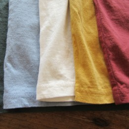 (ひだりから)Old Ivy, Grayish Saxe, White, York Yellow, Old Maroon になります。