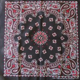 BANDANNA (Black & Red)
